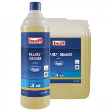 Planta Orange
