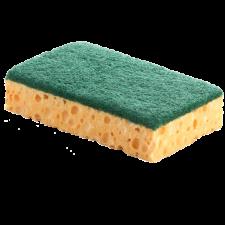 Tampon vert sur éponge